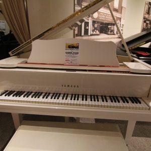 Yamaha G1 White